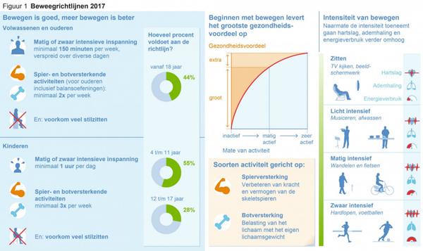 Beweegrichtlijnen 2017